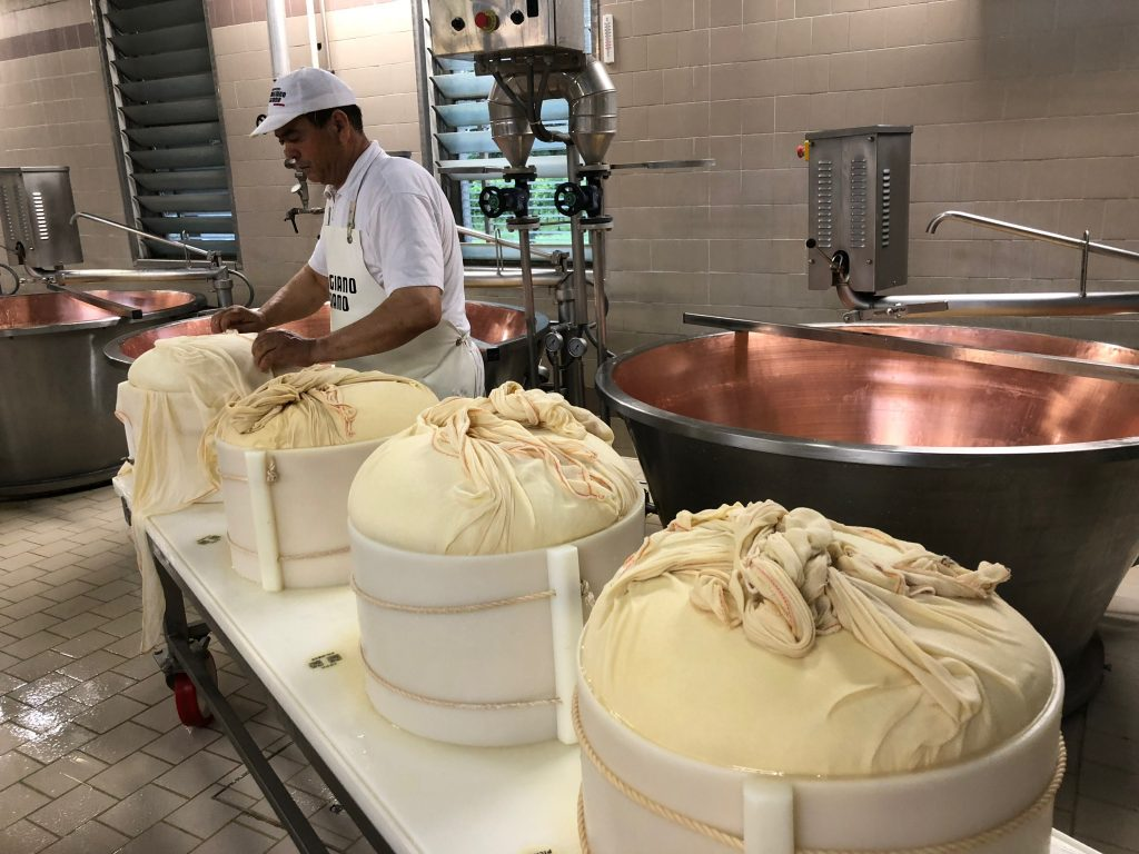 Processes in the making of the cheese